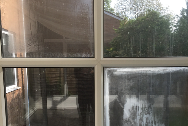 misted window replacement