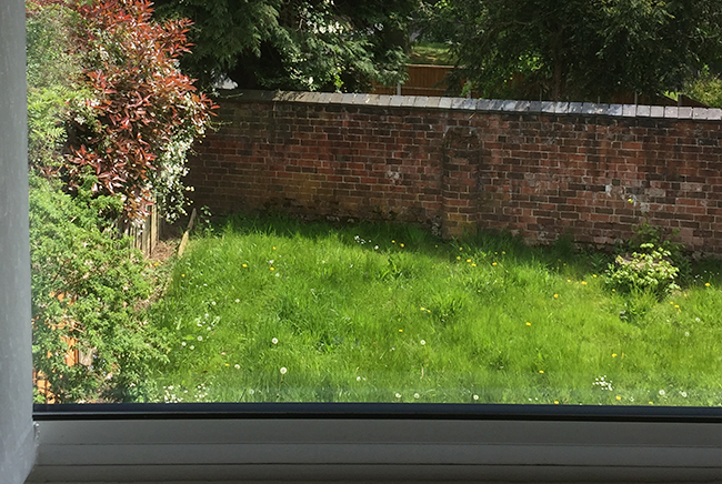 window glass replacement sutton coldfield