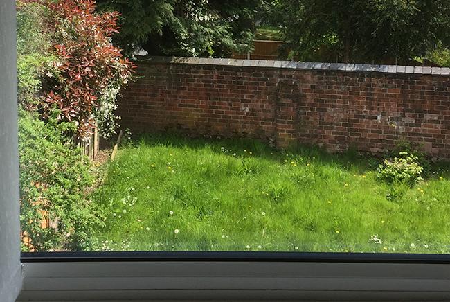 window replacement tamworth
